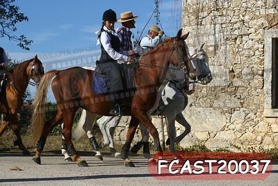 FCAST20037