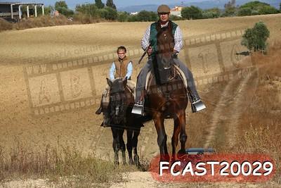 FCAST20029