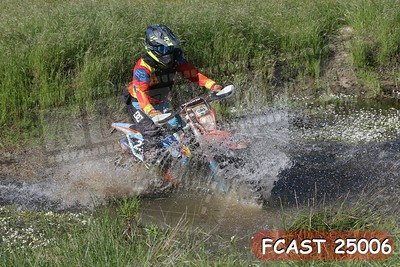 FCAST 25006