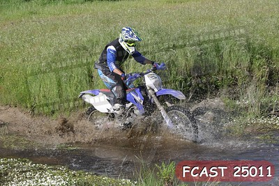 FCAST 25011