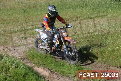FCAST 25003