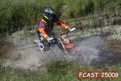 FCAST 25008