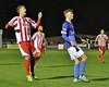 Evo-Stik Northern Premier League - Stourbridge v Ilkeston - 19/10/2015