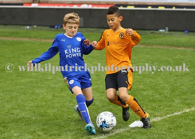 UNDER 9's - WOLVES v LEICESTER CITY
