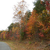 The road to the put-in promises fabulous color.