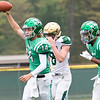 Concord Minutemen quarterback Tommy Kinsman (14) reacts after scoring a touchdown Saturday during the game at Concord High School in Elkhart.