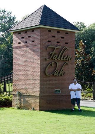 Fallen Oak July 2010