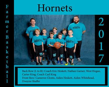 Hornets-Teal_8x10