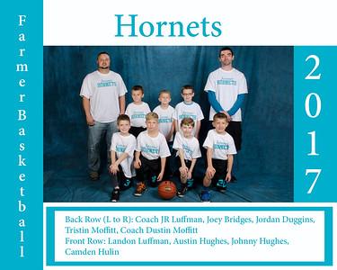 Hornets -White_8x10