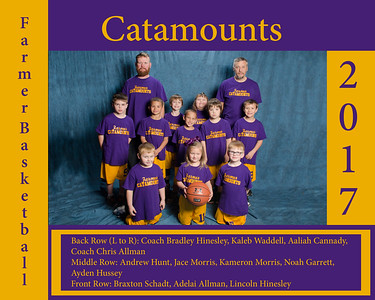 Catamounts_8x10
