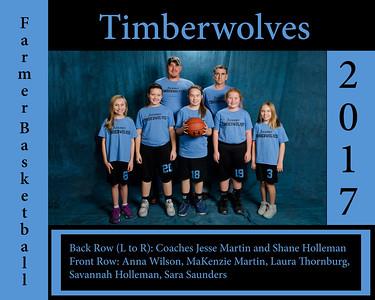 Timberwolves_8x10