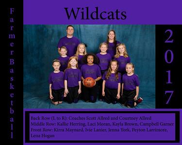 Wildcats_8x10