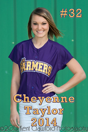 FHS Softball Banners 2013-8095-Edit