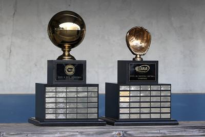 2011-Demi-Fastpitch-Trophy