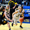 Teutopolis' Raegan Drees looks to drive past Tuscola's Alexis Koester during the Class 2A Newton Sectional semifinal.