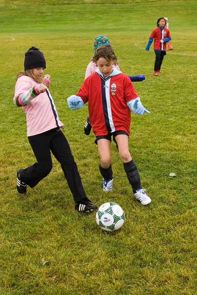 Canyon goes for a steal. Girls club U10 playing on a cold rainly Saturday at 10:30. The Pink Panthers were leading the Red Blades at halftime when the game was called due to snow.