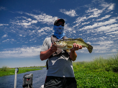 Bass Fishing, Sacramento River Delta, August 2016