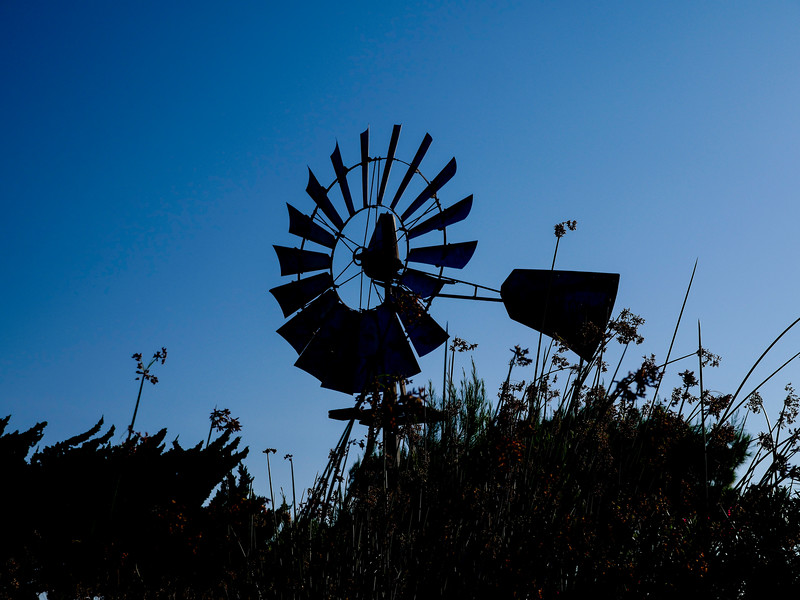 Abandoned windmill off Old River, near Bethel Island, CA. August 4, 2016