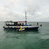 Lobster delivery!  Jardines De La Reina (Gardens of the Queen), Cuba, Fishing Trip 2016.