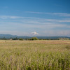 Mount Shasta viewed from the Fall River, Northern California, 2014-07-04