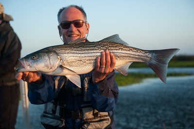 Spring 2014 Striper Fishing II