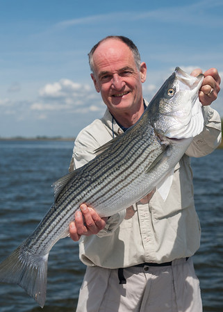 Spring 2014 Striped Bass Fly Fishing