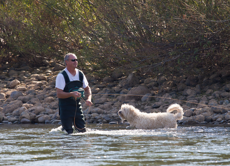 Fishing the Lower Yuba River