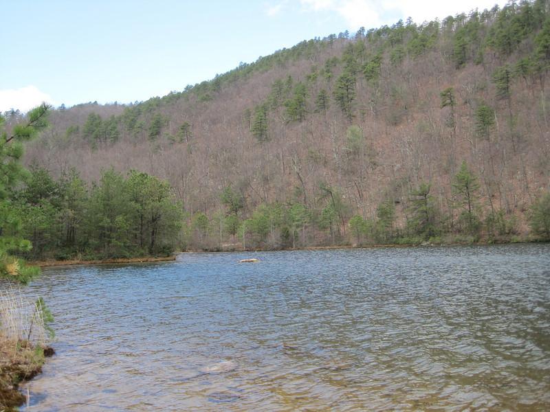 Coles Run reservoir