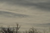 flyover20150102-3