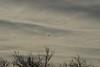 flyover20150102-1