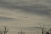 flyover20150102-5