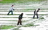 Workers scramble to clear the football field of snow at Emory and Henry University before the VHSL state semi-finial game which J. I. Burton won 2-0 of Holston. Photo by Ned Jilton II