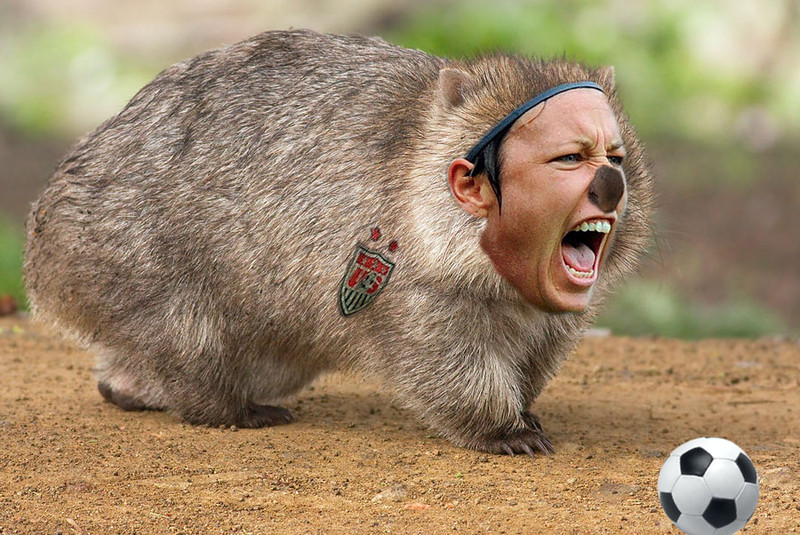 My attempt to create Abby Wombat, after hearing British commentator Ian Darke pronouncing her name differently than his American counterparts during the 2011 Women's World Cup coverage on ESPN.