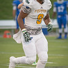 Fitchburg State DE Sophomore Cyrick Watford comes off the field in the 1st quarter at Becker. The Falcons hung on to win 27-20. SENTINEL&ENTERPRISE/ Jim Marabello