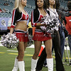 Atlanta Falcon Cheerleaders