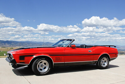 100821 Mustang_002