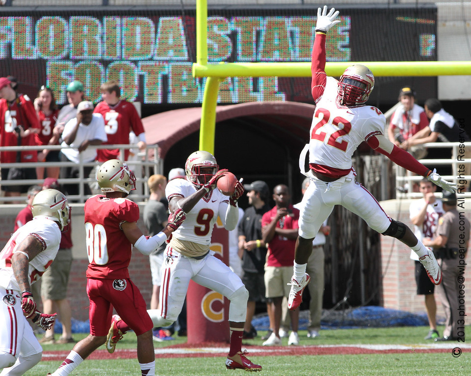Wlpearce 2013 fsu spring game i could station myself in the end zone and shoot practically the entire field nice heres an interception that happened on the opposite twenty yard line voltagebd Image collections