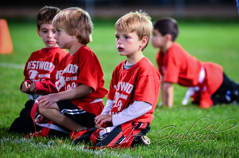 From Flag_vs_Westwood on Oct 18, 2013 www.shoot2please.com - Joe Gagliardi Photography