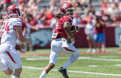 Senior Wide Receiver Keon Hatcher catches and flees Defensive Back Ryder Lucas during the Arkansas Red-White Spring Football Game on Saturday, April 25, 2015 in Fayetteville, Arkansas at Donald W. Reynolds Razorback Stadium.  The Red team won 62-18 in front of an official attendance of 41,220 fans.   (Alan Jamison, Nate Allen Sports Service)