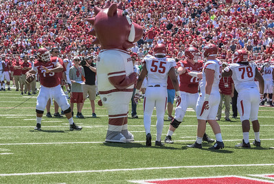 "Sebastian Tretola prepares to throw to SEC Network ""ringer"" Laura Rutledge during the Arkansas Red-White Spring Football Game on Saturday, April 25, 2015 in Fayetteville, Arkansas at Donald W. Reynolds Razorback Stadium.  The Red team won 62-18 in front of an official attendance of 41,220 fans.   (Alan Jamison, Nate Allen Sports Service)"