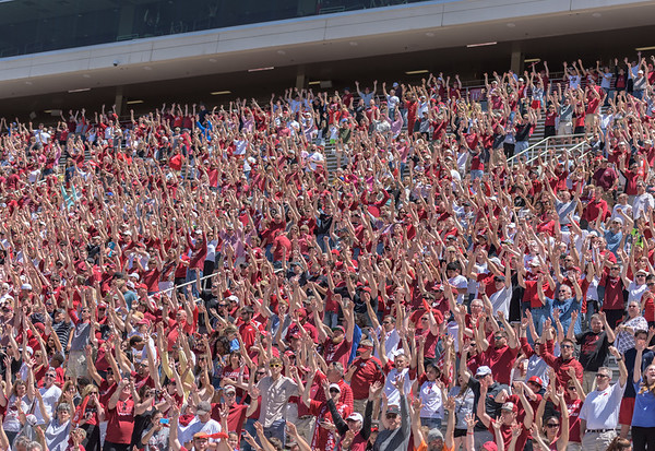 Fans Call the Hogs during the Arkansas Red-White Spring Football Game on Saturday, April 25, 2015 in Fayetteville, Arkansas at Donald W. Reynolds Razorback Stadium.  The Red team won 62-18 in front of an official attendance of 41,220 fans.   (Alan Jamison, Nate Allen Sports Service)