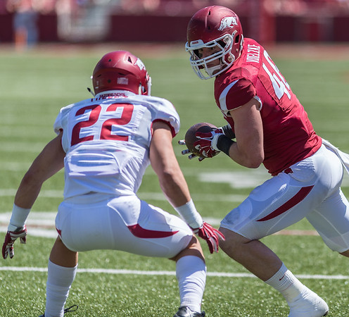 Freshman Defensive Back Reid Miller prepares to stop Senior Tight End Alex Voelzke during the Arkansas Red-White Spring Football Game on Saturday, April 25, 2015 in Fayetteville, Arkansas at Donald W. Reynolds Razorback Stadium.  The Red team won 62-18 in front of an official attendance of 41,220 fans.   (Alan Jamison, Nate Allen Sports Service)