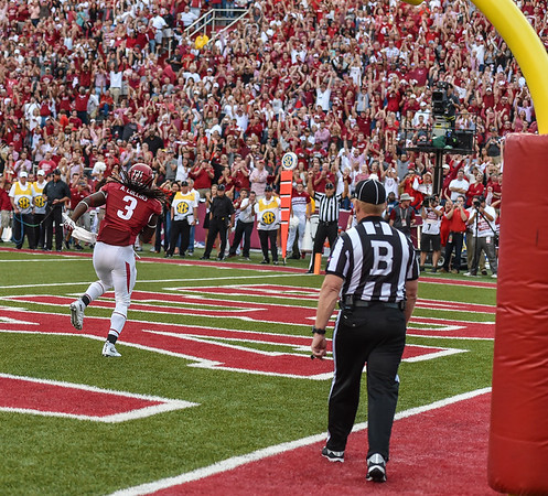 Alex Collins in the end zone after a rush for a touchdown during a football game between the Arkansas Razorbacks and the Texas Tech Red Raiders at Reynolds Razorback Stadium at the University of Arkansas in Fayetteville, Arkansas.   Texas Tech won 35-24.  (Alan Jamison, Nate Allen Sports Service)