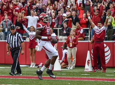 Jeremy Sprinkle scores a touchdown during the football game between the Arkansas Razorbacks and the Auburn Tigers at Reynolds Razorback Stadium in Fayetteville, Arkansas.  Arkansas led 14-7 at halftime.  (Alan Jamison, Nate Allen Sports Service)