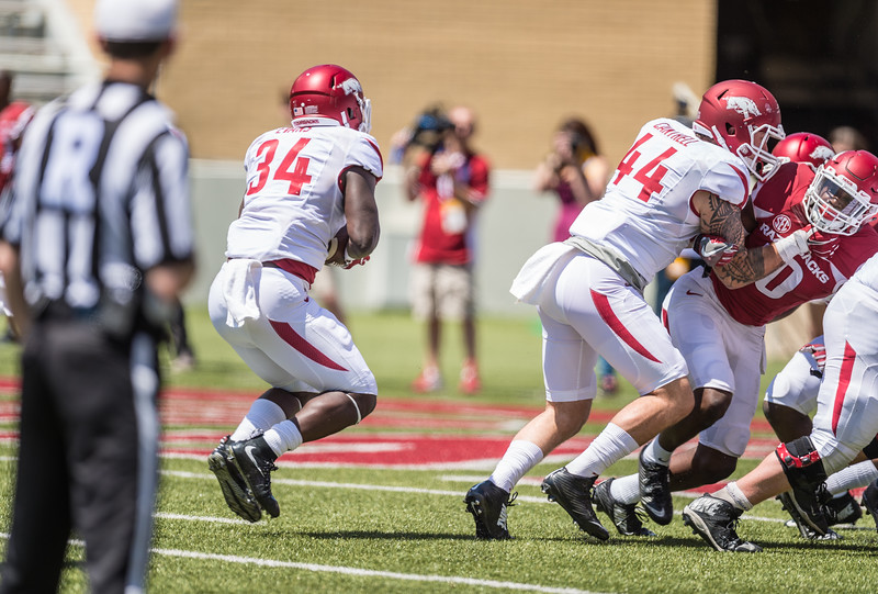 Denzell Evans carries during the Arkansas Razorback Spring Football Game on 4/23/2016.   (Alan Jamison, Nate Allen Sports Service)