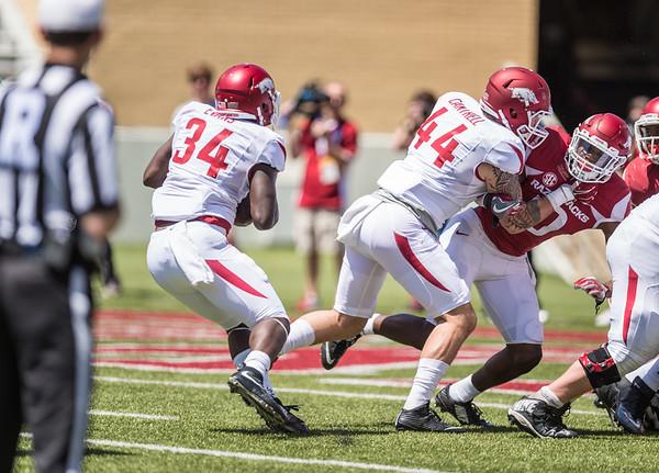 Denzell Evans carries during the Arkansas Razorback Spring Football Game on 4/23/2016.   (Alan Jamison, Nate Allen Sports Service)