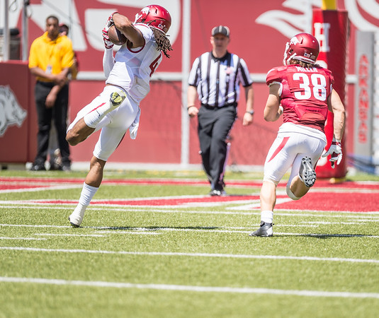 Keon Hatcher with a catch during the Arkansas Razorback Spring Football Game on 4/23/2016.   (Alan Jamison, Nate Allen Sports Service)