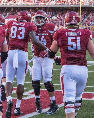 Arkansas Razorbacks offensive lineman Colton Jackson (74) congratulates Jeremy Sprinkle after Sprinkle's touchdown during a football game between the Arkansas Razorbacks and the Louisiana Tech Bulldogs on Saturday, September 3, 2016.  (Alan Jamison, Nate Allen Sports Service)