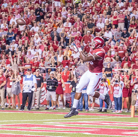 Arkansas Razorbacks tight end Jeremy Sprinkle (83) with a touchdown catch during a football game between the Arkansas Razorbacks and the Texas State Bobcats on Saturday, September 17, 2016.  (Alan Jamison, Nate Allen Sports Service)