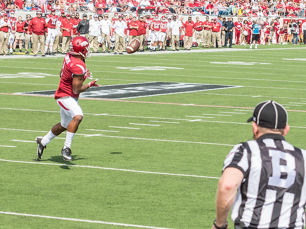 Jared Cornelius catches a touchdown pass during a football game between the Arkansas Razorbacks and the Alcorn State Braves on Saturday, October 1, 2016.  (Alan Jamison, Nate Allen Sports Service)